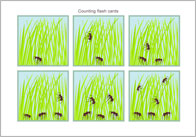 ants flash card thumb Counting Flash Cards   Ants