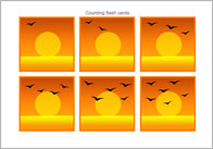 Counting Flash Cards – Birds