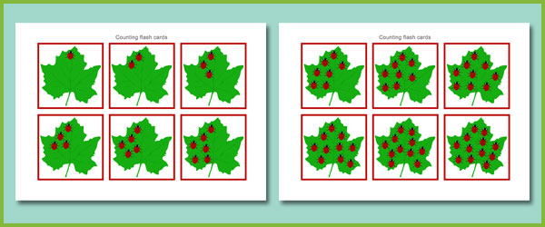 Counting Flash Cards Ladybirds Free Early Years