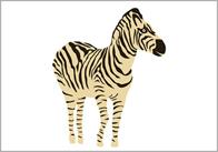 Zebra illustration