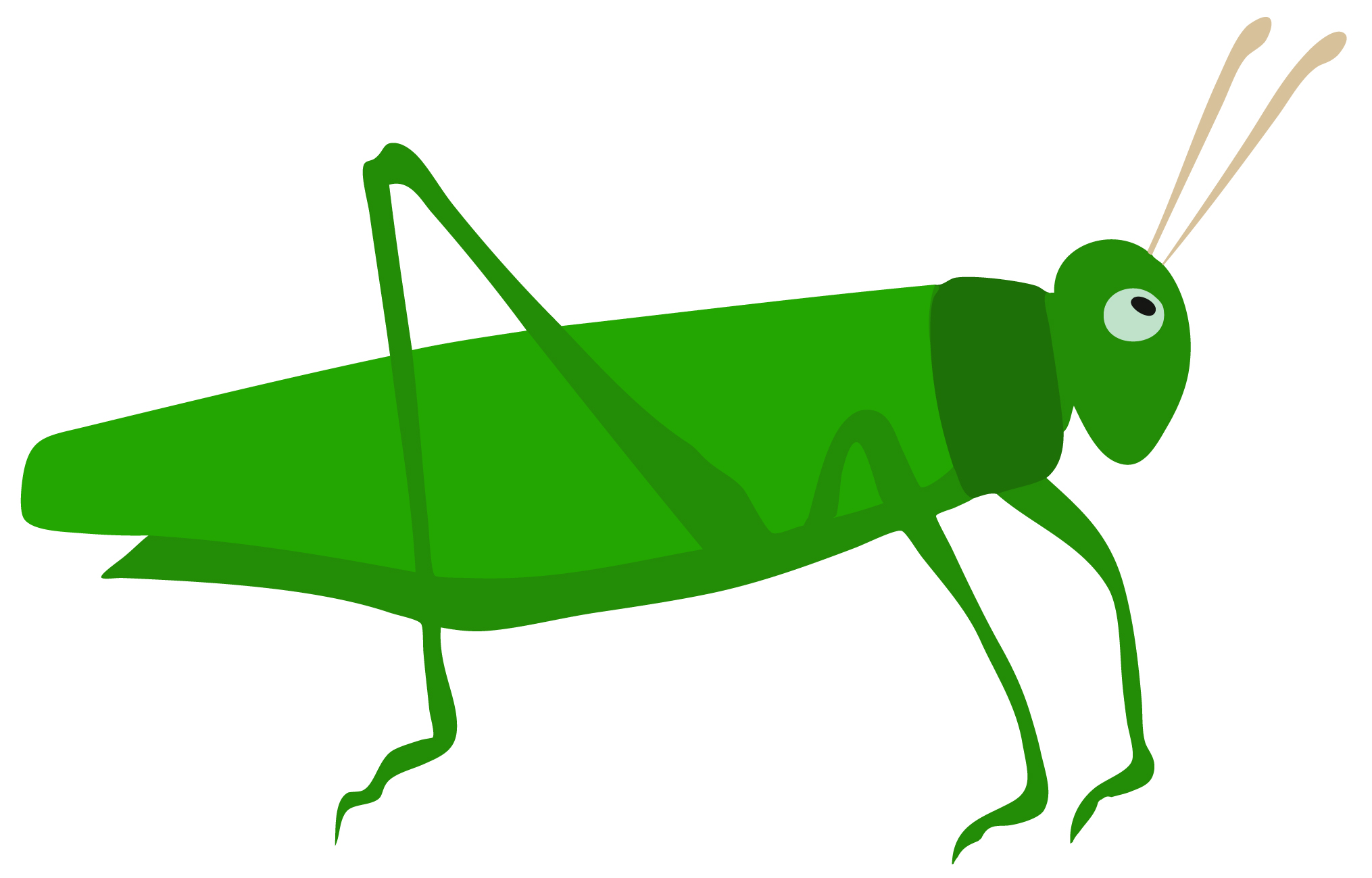 Early Learning Resources Grasshopper Free Early Years