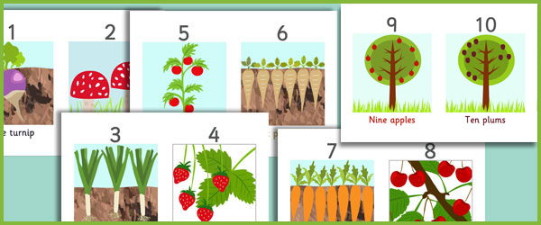 Fruit and Vegetables Number Line