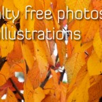 Photos-and-illustrations(autumn)