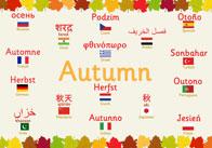 multilingual autumn thumb Multilingual Autumn Poster