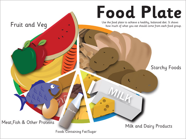 Eatwell Food Plate