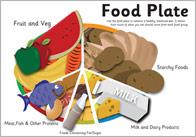 Eatwell Food Plate