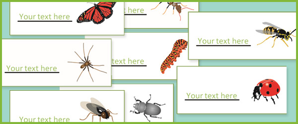 Minibeast / Insect Labels