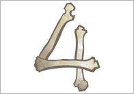 Bone Numbers thumb Bone Themed Numbers