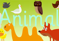 Animals Display Poster