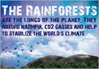 Rainforests Poster