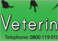 Vet Role Play Banner