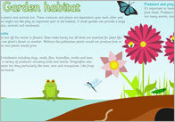 Large Garden Habitat Poster