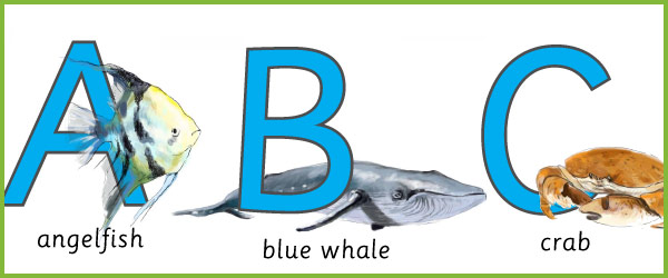Under the sea / fish alphabet