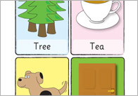 Phonology flash cards