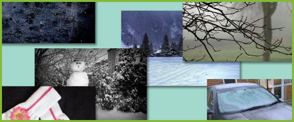 Winter Photo Pack / Collection