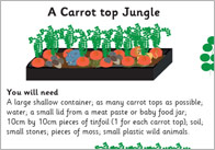 Carrot top jungle1 Carrot Top Jungle Activity