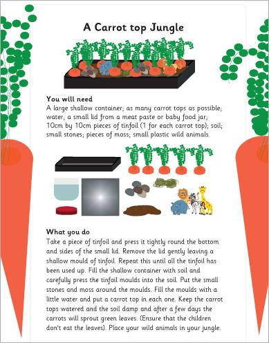 Carrot top jungle activity