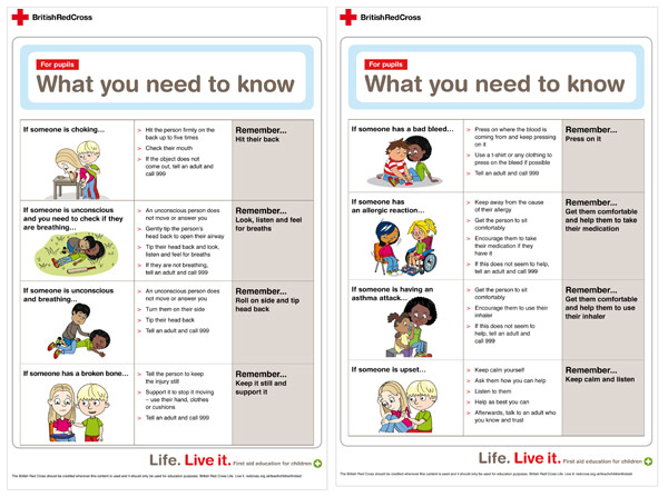 Old Resources Policy Statements >> Red Cross First Aid Information Sheet | Free Early Years & Primary Teaching Resources (EYFS & KS1)
