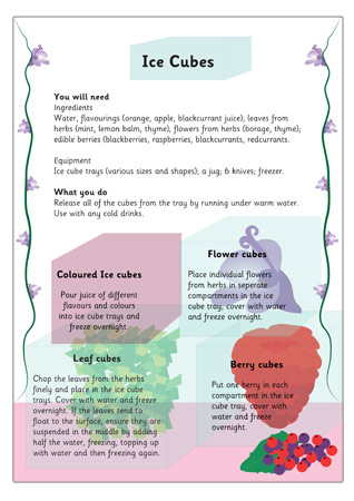 Ice Cubes Activity