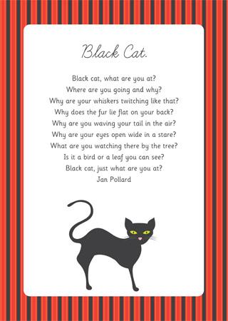 Black Cat Poem