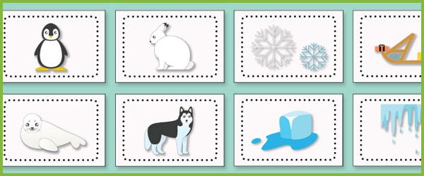 Polar Regions Flashcards