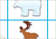 Polar-regions-Bingo