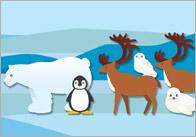 Polar-regions-poster