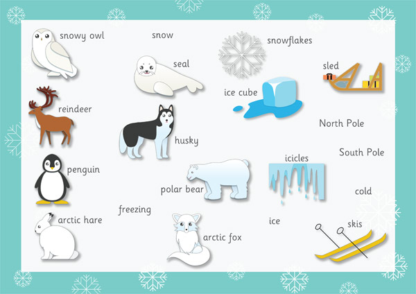Polar Regions Word Mat Free Teaching Resources Free