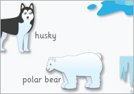 Polar-regions-word-mat