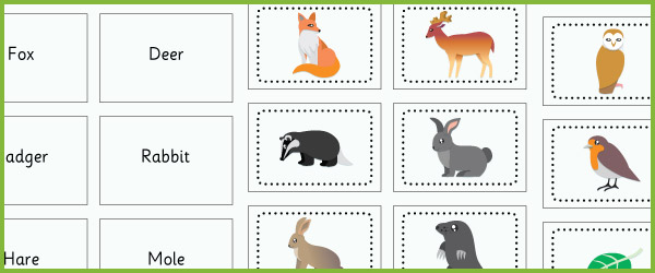British Wildlife Small Flashcards on Farm Animal Worksheets