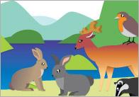 British Wildlife Notepaper / Page Borders