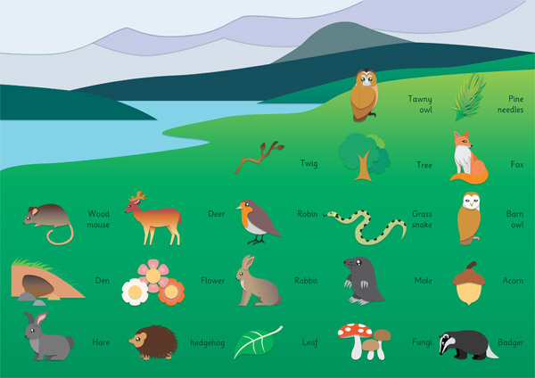 Early Learning Resources British Wildlife Word Mat Free Teaching Resources