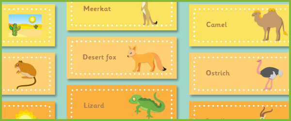 Desert Themed Topic Cards