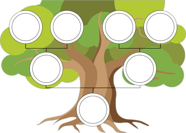 Family Tree Template Poster Free Early Years Primary Teaching