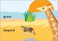 Safari-word-mat