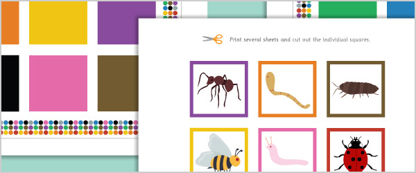 Minibeast Colour Matching Game