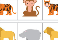 Zoo-animal-sequence-and-patterns