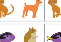 pets-sequence-and-patterns