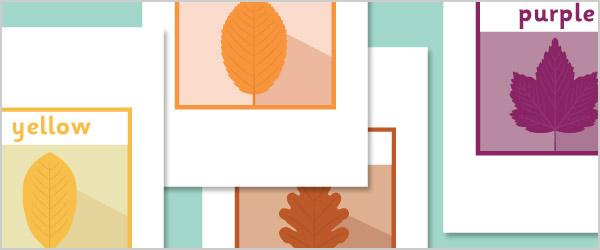Autumn Leaf Colour Posters