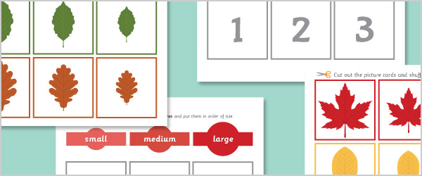 Autumn Leaves Size Sorting Cards