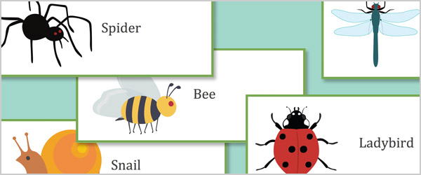 Minibeast Editable Labels