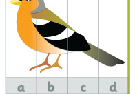 Birds-alphabet-puzzles-thumb