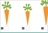 Fruit-and-veg-measuring