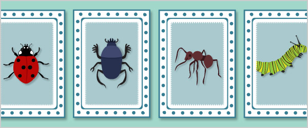 Minibeast Snap Cards / Matching Pairs