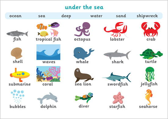Under The Sea Word Mat Free Early Years Amp Primary