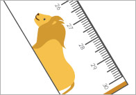 Jungle-animals-Printable-rulers-thumbs