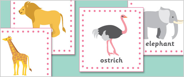 Exotic Animals 15cm Cards