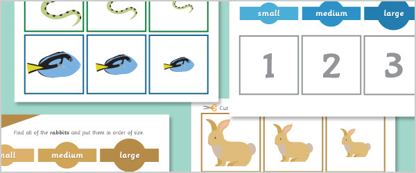 Pets Size Sorting Activity