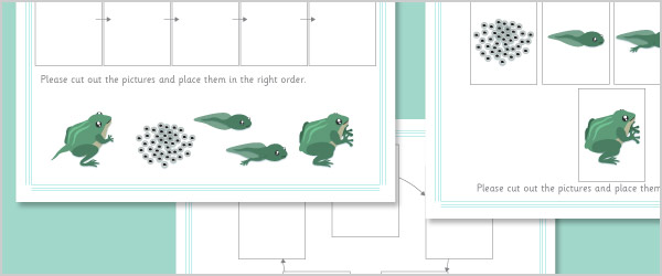 Frog Life Cycle Cut and Stick