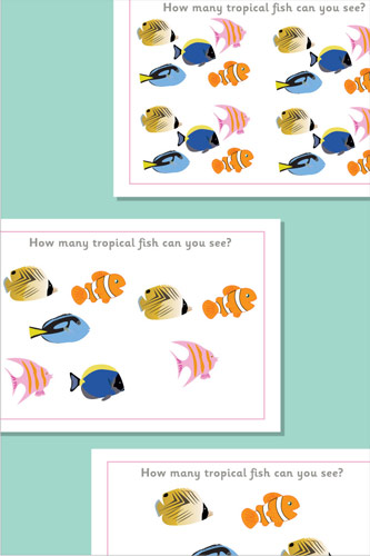 Counting / Estimating Flash Cards - Fish
